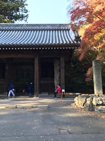 f:id:aya-haseko:20171204151008j:plain