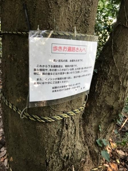 f:id:aya-haseko:20171205132449j:plain