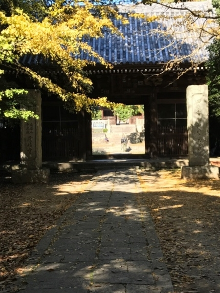 f:id:aya-haseko:20171205132456j:plain