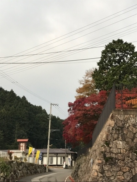 f:id:aya-haseko:20171213174245j:plain