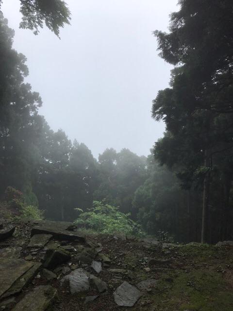 f:id:aya-haseko:20180621171308j:plain