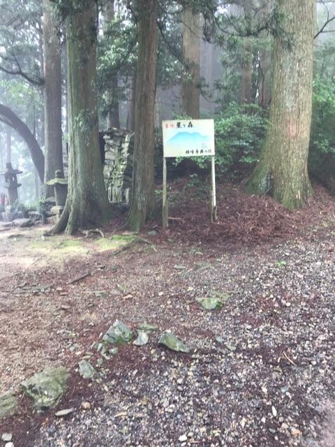 f:id:aya-haseko:20180621171335j:plain