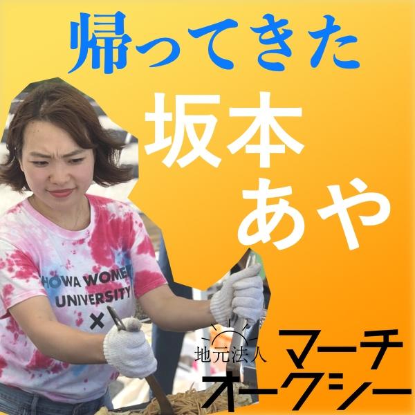 f:id:aya-mokoshi:20190215160829j:plain