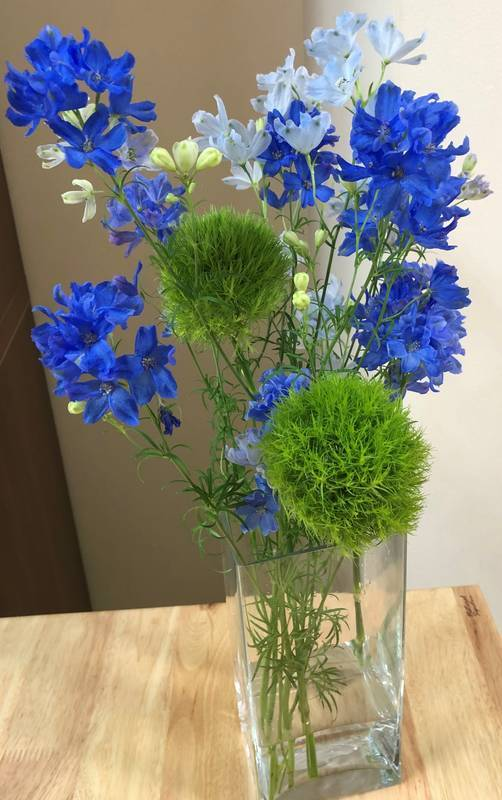 Delphinium and green trick