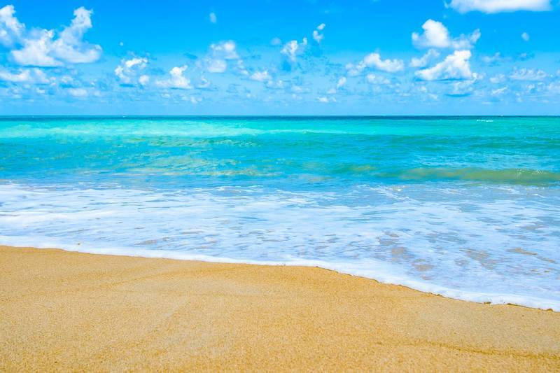 clear_sea