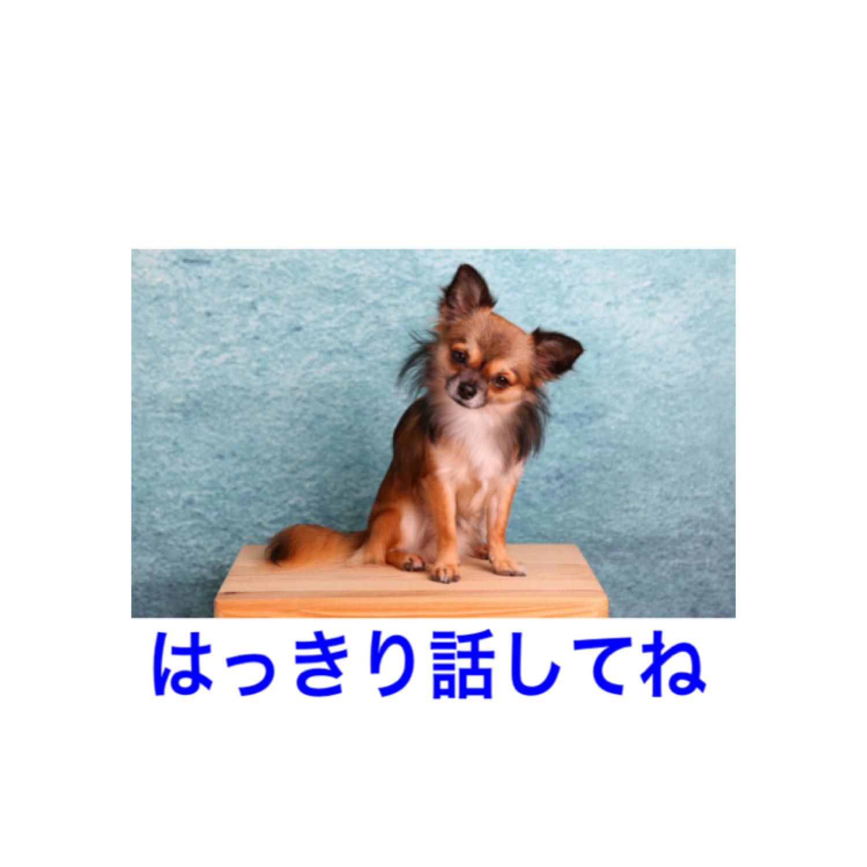 f:id:aya_nee:20190423094638p:image