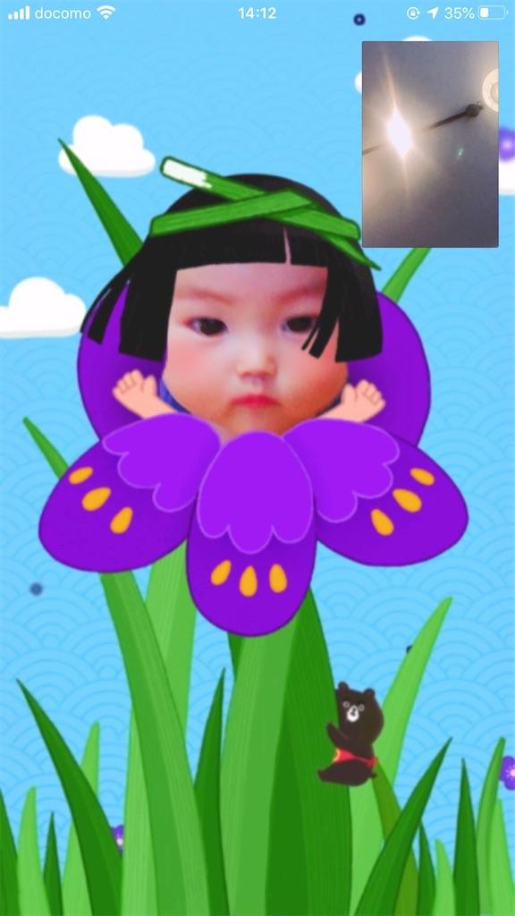 f:id:ayacafe_blog:20200502214044j:image