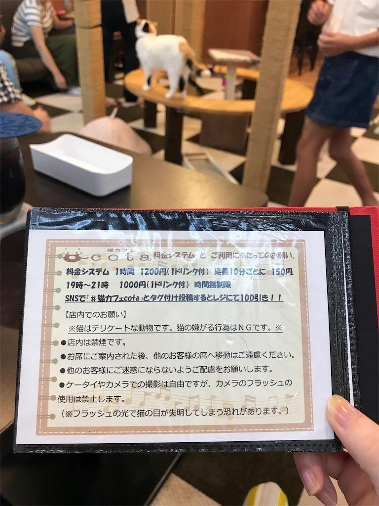 f:id:ayachan0910:20180803230417j:image