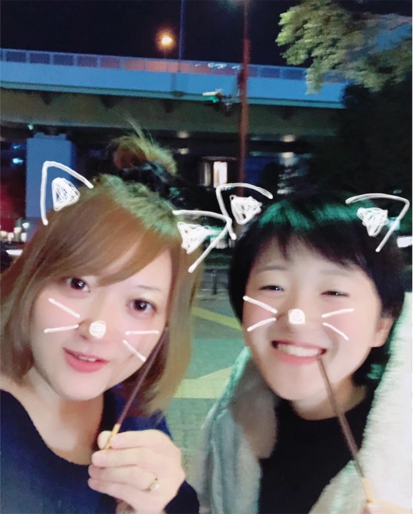 f:id:ayachantoland:20181127205111j:image