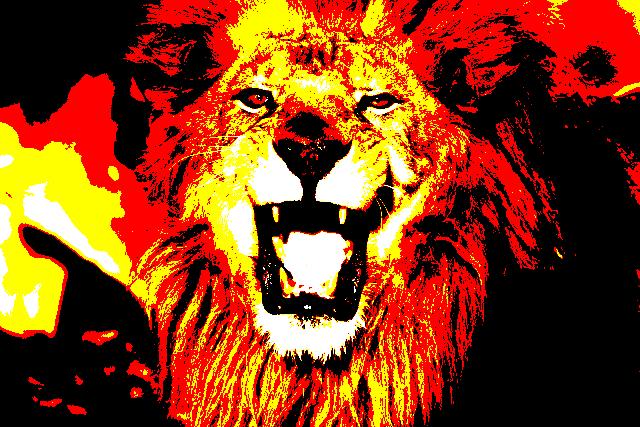 夕陽のライオン