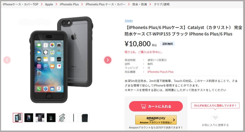 f:id:ayafumi-rennzaki:20190123170819j:plain