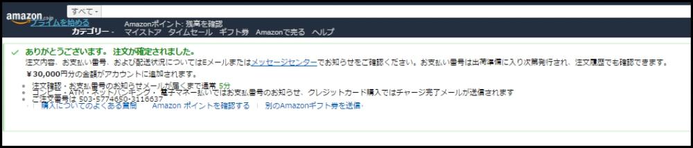 f:id:ayafumi-rennzaki:20190220103017j:plain