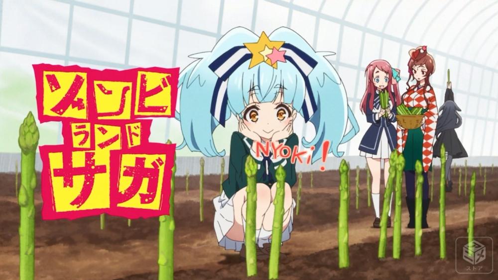 f:id:ayafumi-rennzaki:20190226093542j:plain