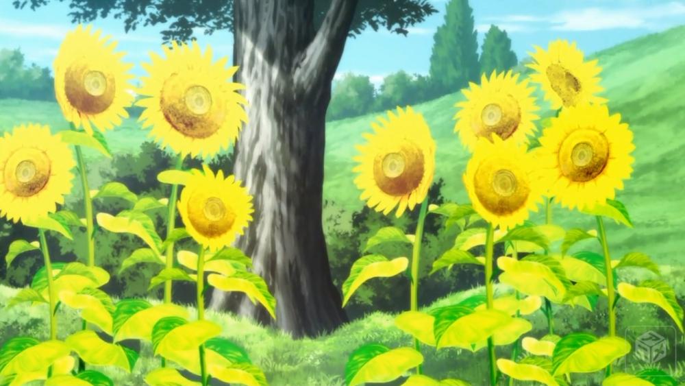 f:id:ayafumi-rennzaki:20190728045009j:plain