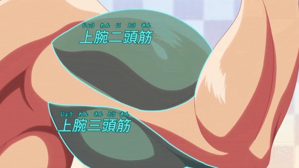 f:id:ayafumi-rennzaki:20190909064644j:plain