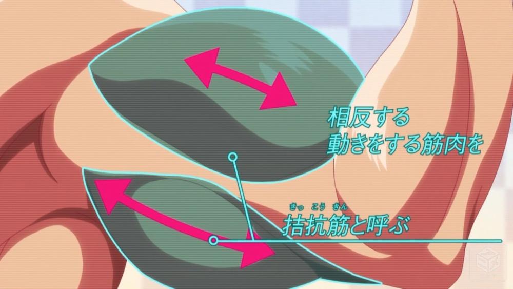 f:id:ayafumi-rennzaki:20190909064747j:plain
