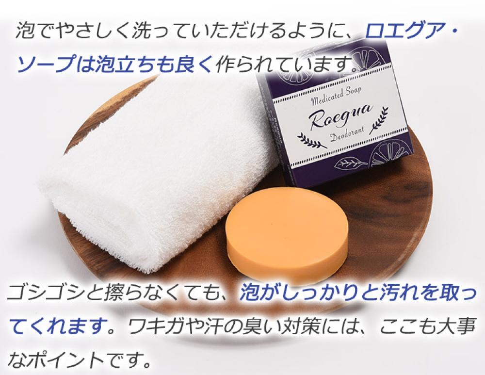 f:id:ayafumi-rennzaki:20200320191047j:plain