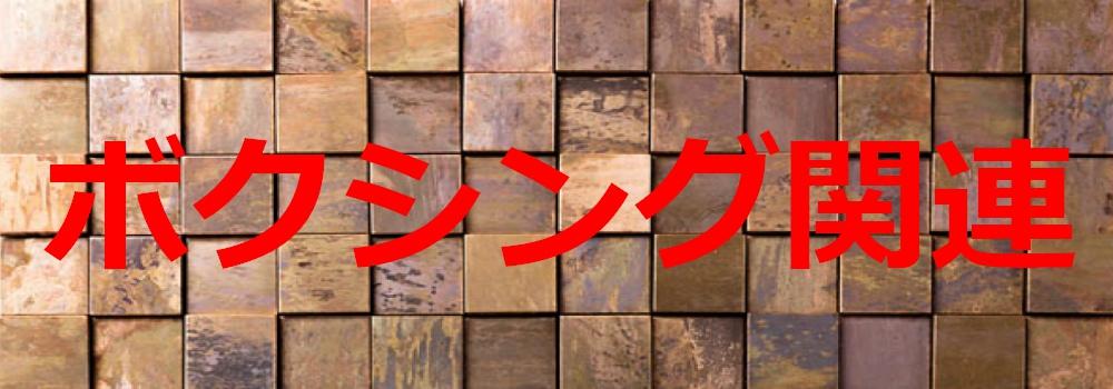 f:id:ayafumi-rennzaki:20201106065345j:plain
