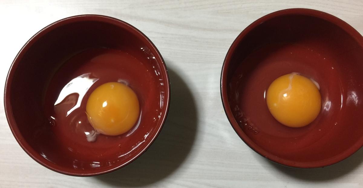 f:id:ayafumi-rennzaki:20210105215350j:plain