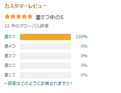f:id:ayafumi-rennzaki:20210122063137j:plain