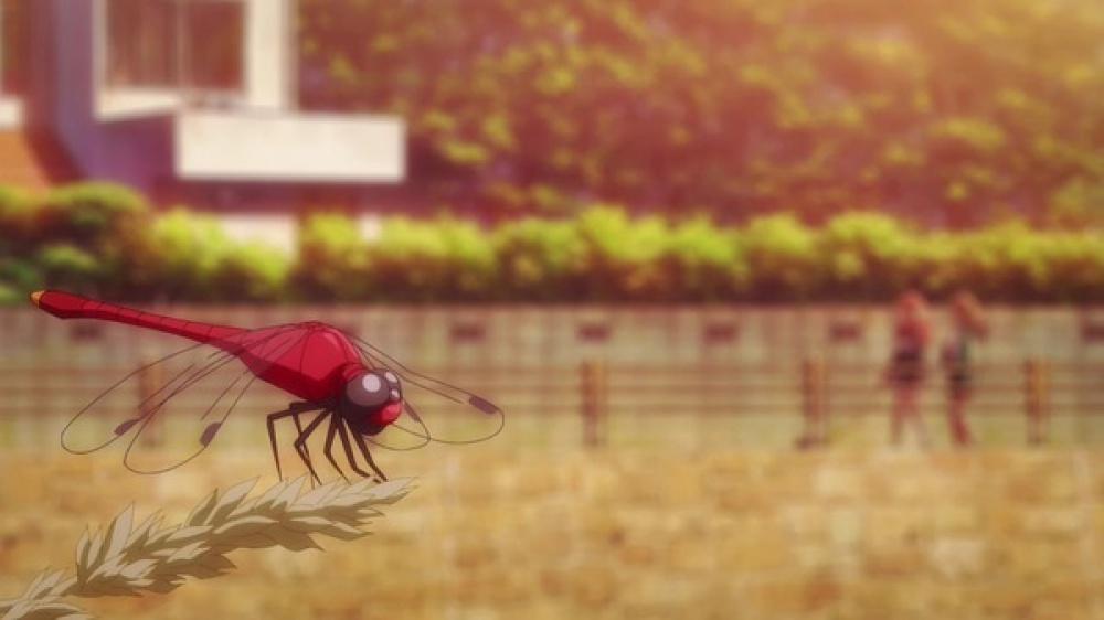f:id:ayafumi-rennzaki:20210523060043j:plain