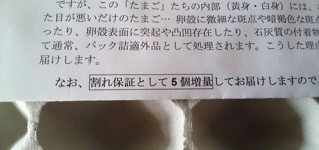 f:id:ayafumi685:20181102183903j:plain