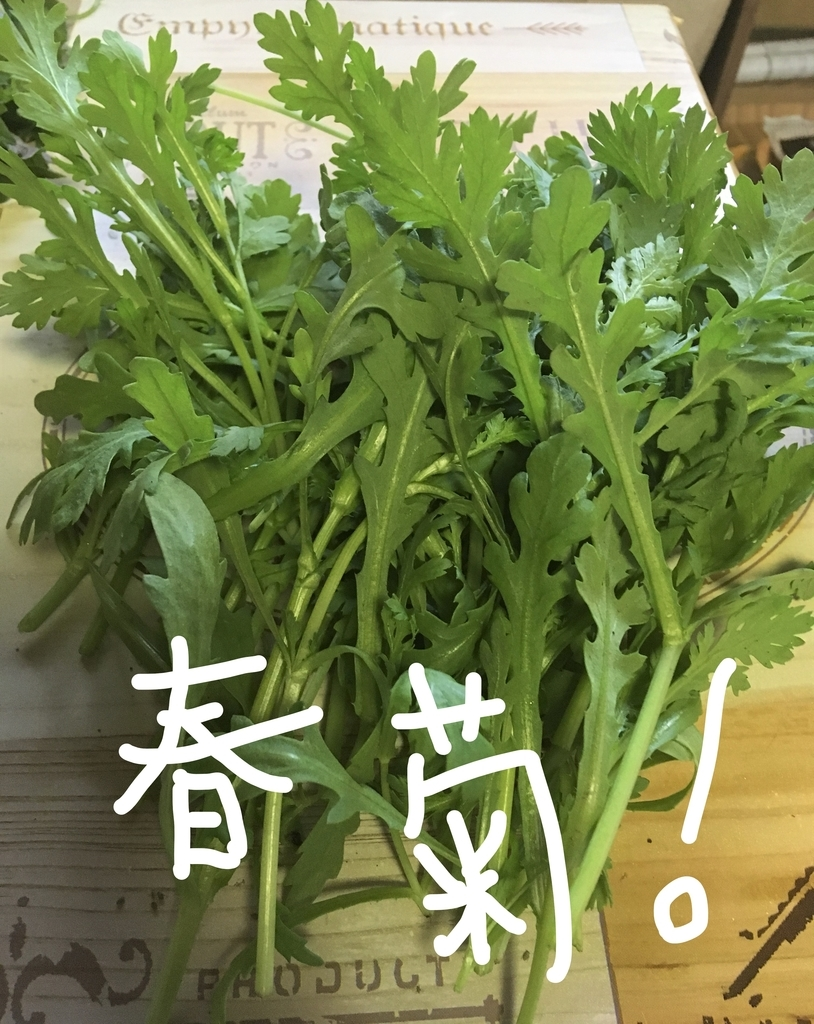 f:id:ayafumi685:20181205204656j:plain