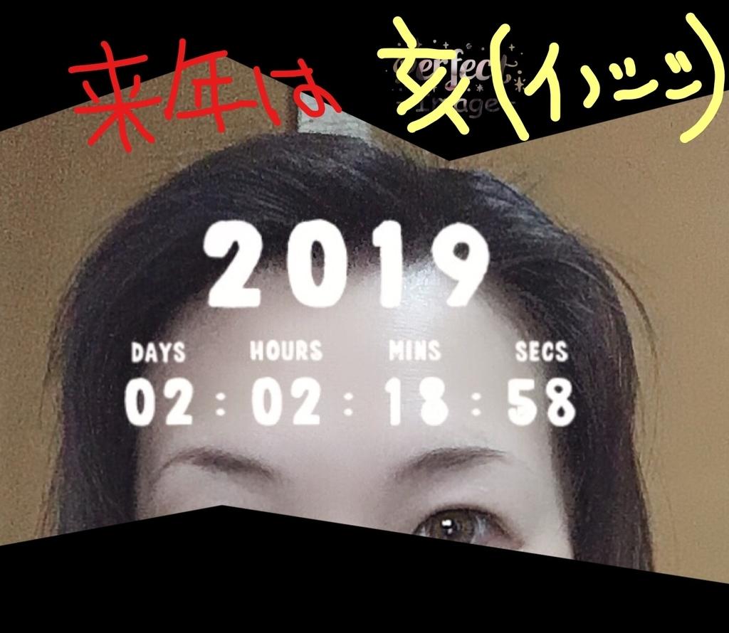 f:id:ayafumi685:20181229215041j:plain