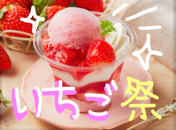 f:id:ayafumi685:20190113214150j:plain