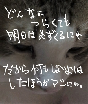 f:id:ayafumi685:20190118021312j:plain