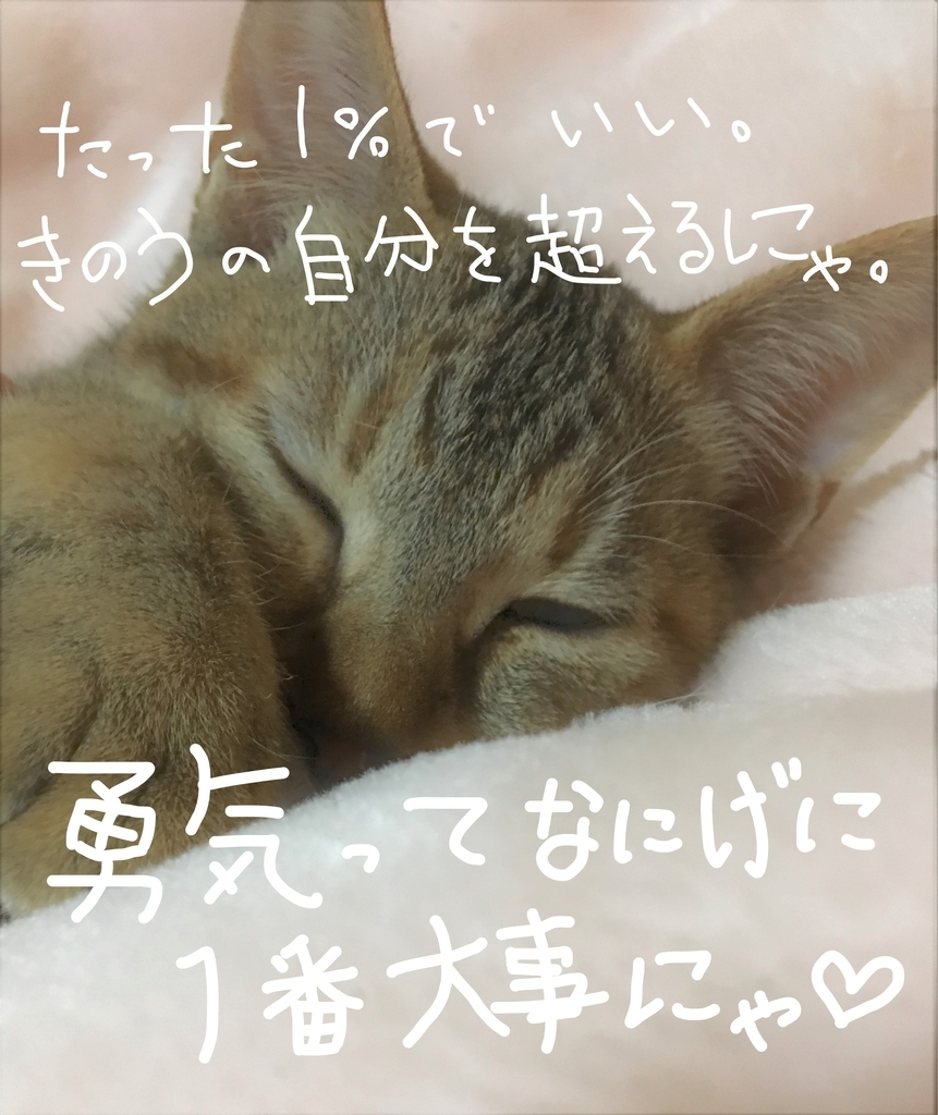 f:id:ayafumi685:20190118030908j:plain