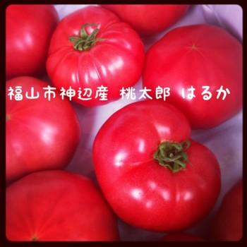 f:id:ayaka1014:20120616192751j:image