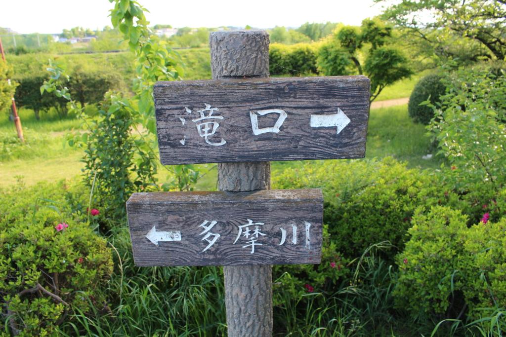 f:id:ayaka_potsunen:20170506004748j:plain