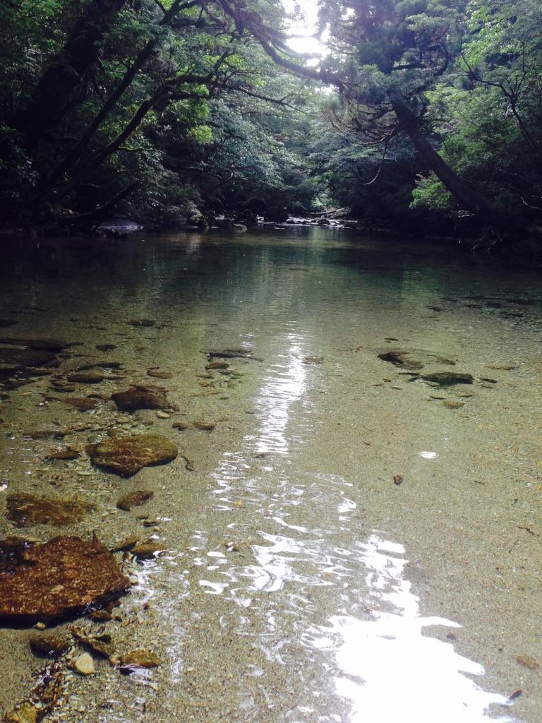 f:id:ayako-sundries:20160804181601j:image