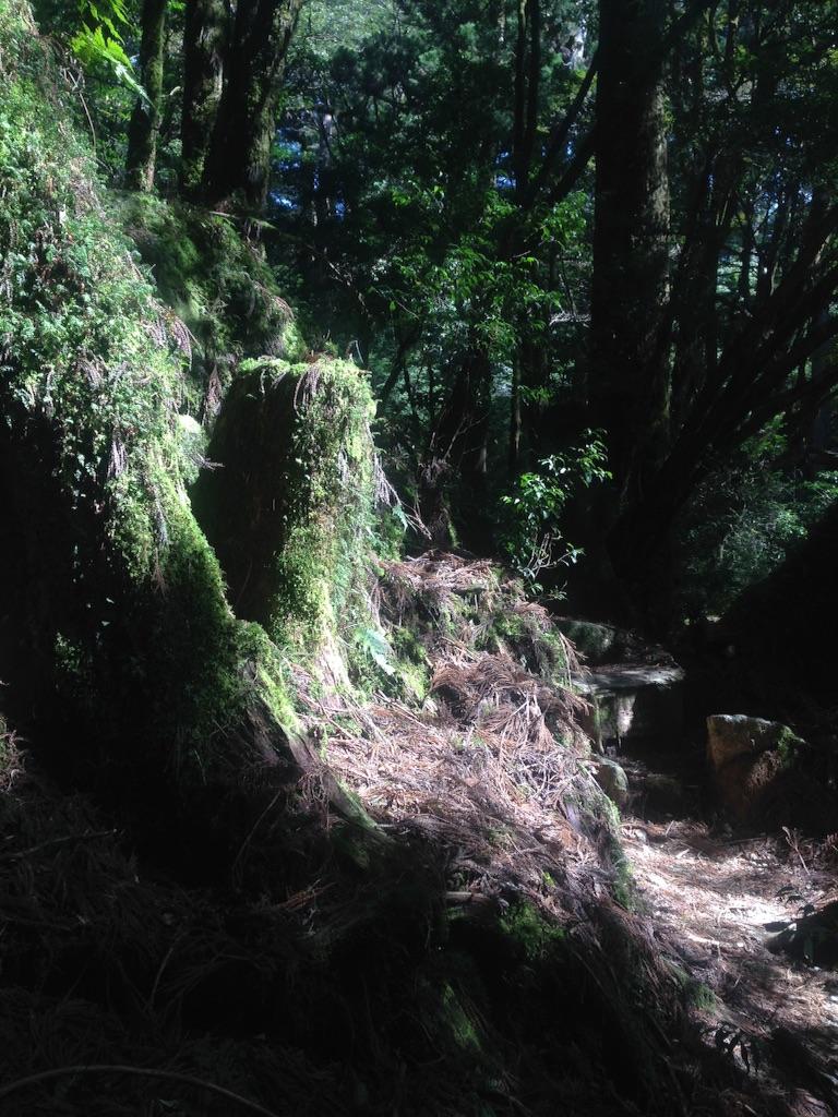 f:id:ayako-sundries:20170413124116j:image