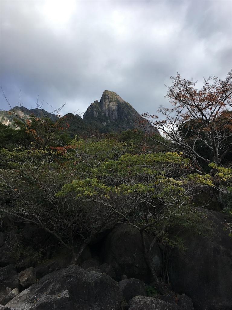 f:id:ayako-sundries:20171217172145j:image