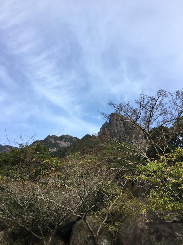 f:id:ayako-sundries:20171228115947j:plain