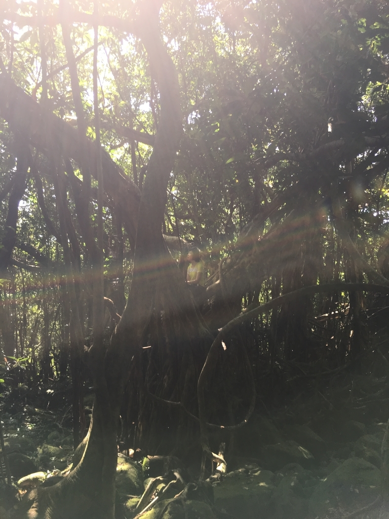 f:id:ayako-sundries:20180919103634j:plain