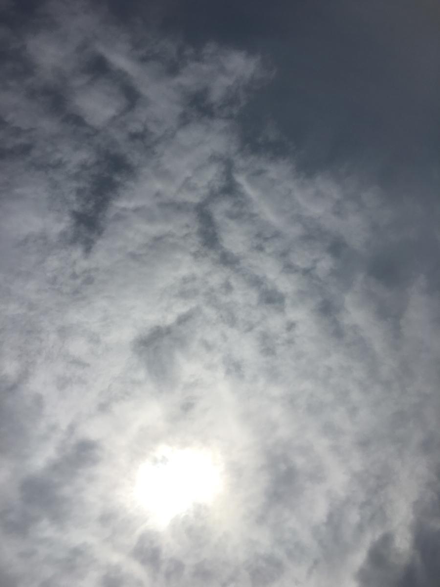 f:id:ayako-sundries:20190322133817j:plain