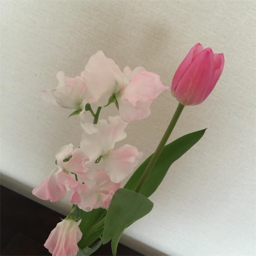 f:id:ayako312:20170401000236j:image
