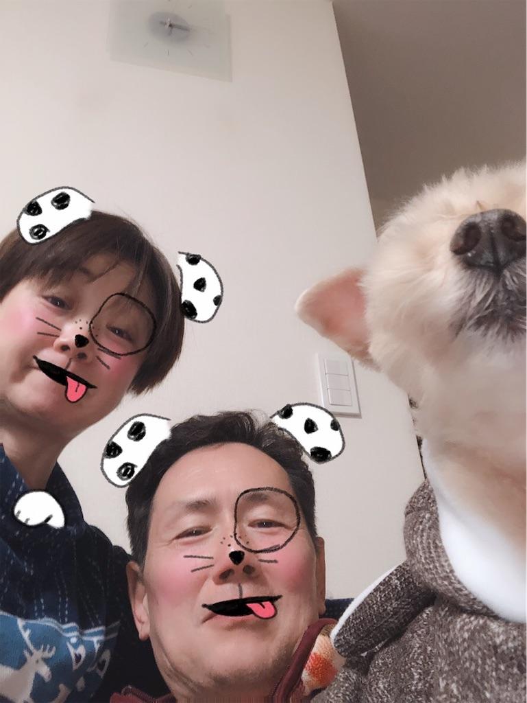 f:id:ayako312:20190103212454j:image