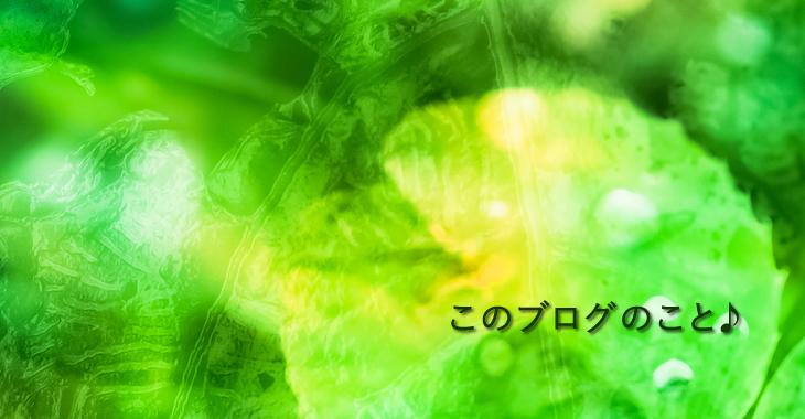 f:id:ayako_tipsy:20160805201251j:plain