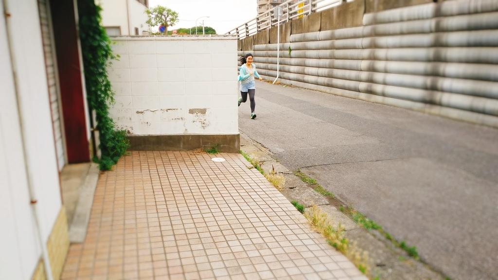 f:id:ayamiterashima:20170624201339j:plain