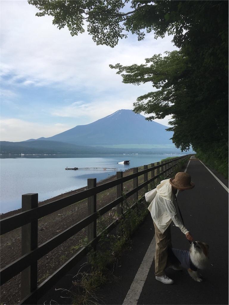 f:id:ayapone-1706:20170731104943j:image