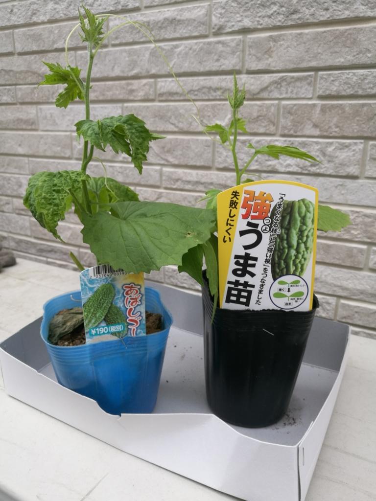 f:id:ayayuito_japan2012401:20170524182849j:plain