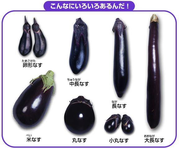 f:id:ayayukimoto:20210422162507j:plain