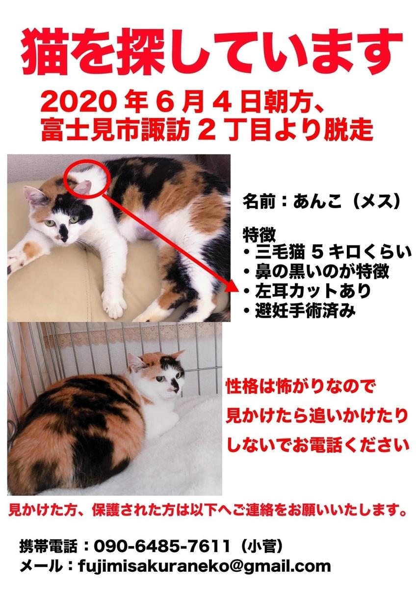 f:id:ayeyadana-d301:20200612171100j:plain
