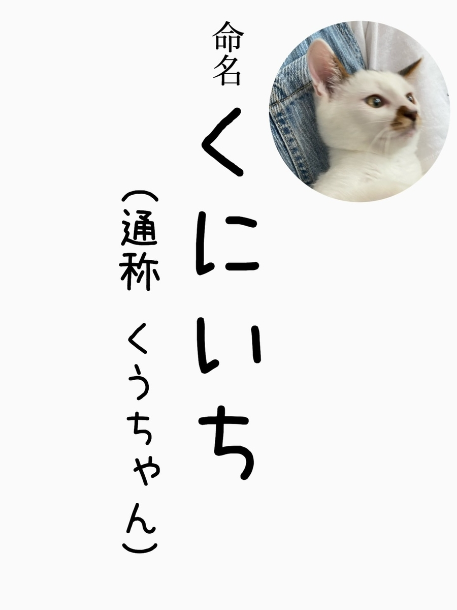 f:id:ayeyadana-d301:20200924000636j:plain