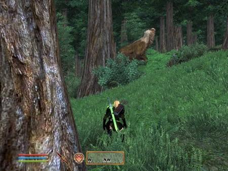 巨大熊発見 巨大熊発見  個別「巨大熊発見」の写真、画像、動画