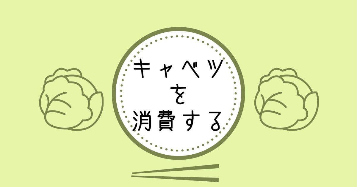 f:id:ayuchiyua:20210305231332j:plain
